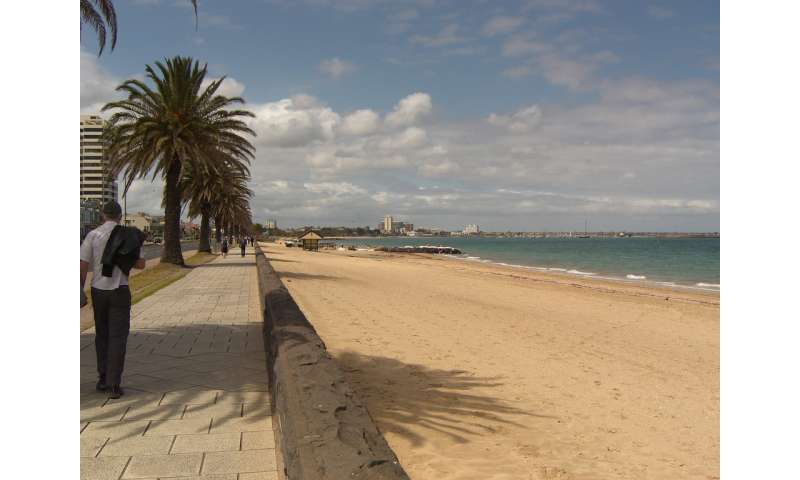 World-first scientific discovery uncovered at a Melbourne beach