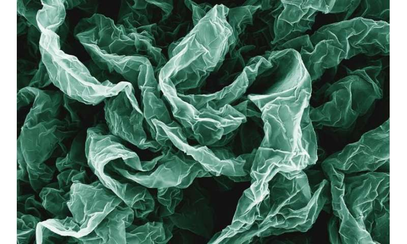Wrinkles and crumples make graphene better
