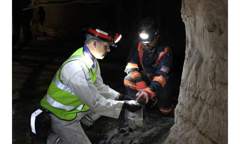 Bacterium from coal mine fire could aid drug targeting
