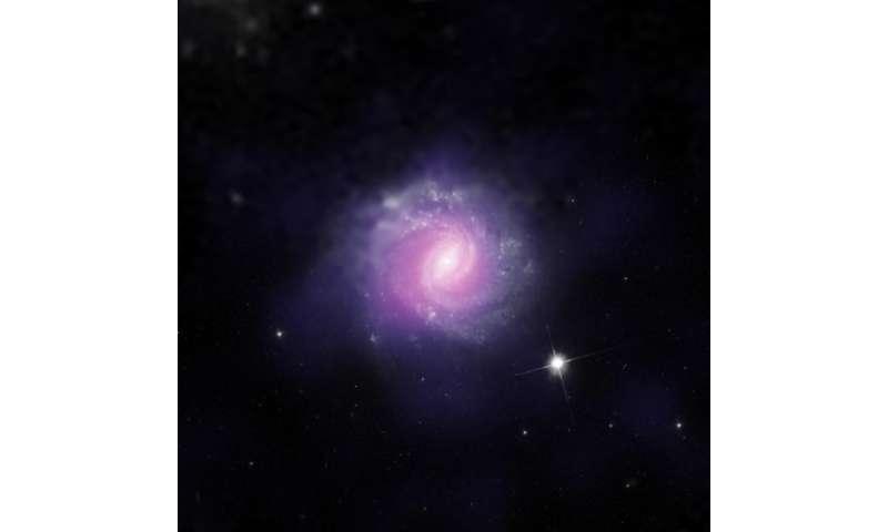 Black Holes Hide in Our Cosmic Backyard