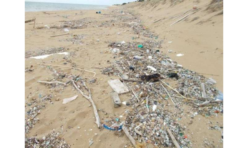 Cleaning marine litter in the Mediterranean and the Baltic Sea