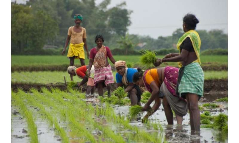 Climate-smart agriculture to ensure a food secure future