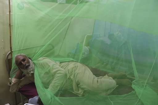 Dengue outbreak kills five people in northwest Pakistan
