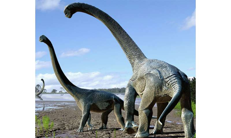 Dinosaur find in outback Queensland
