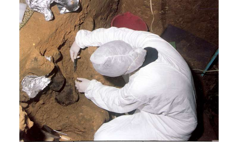 DNA from extinct humans discovered in cave sediments