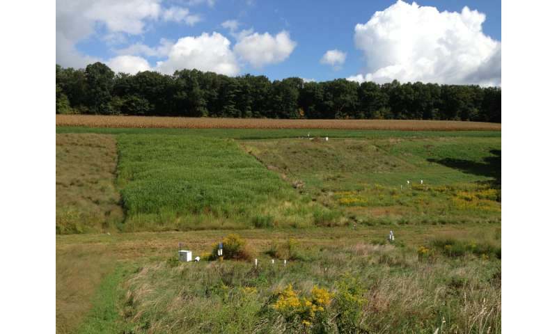 Energy crop production on conservation lands may not boost greenhouse gases