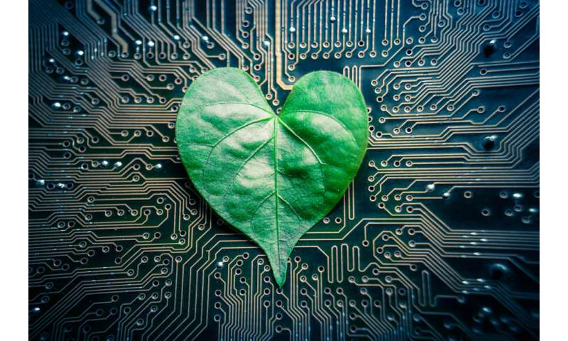 Engineers design 'tree-on-a-chip'
