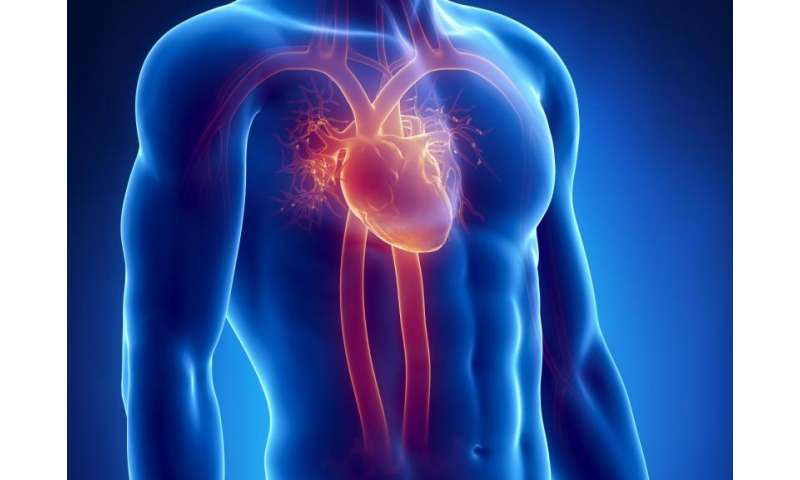 """Heart attack shown to be """"systemic condition"""""""