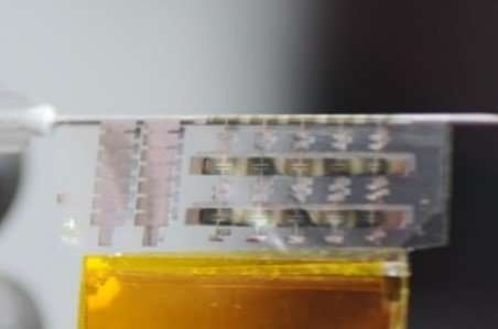 Highly flexible organic flash memory for foldable and disposable electronics