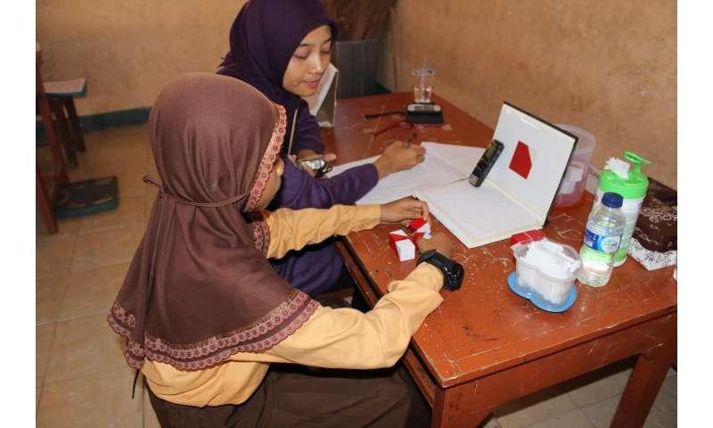 Maternal micronutrients, nurturing environment boost child development