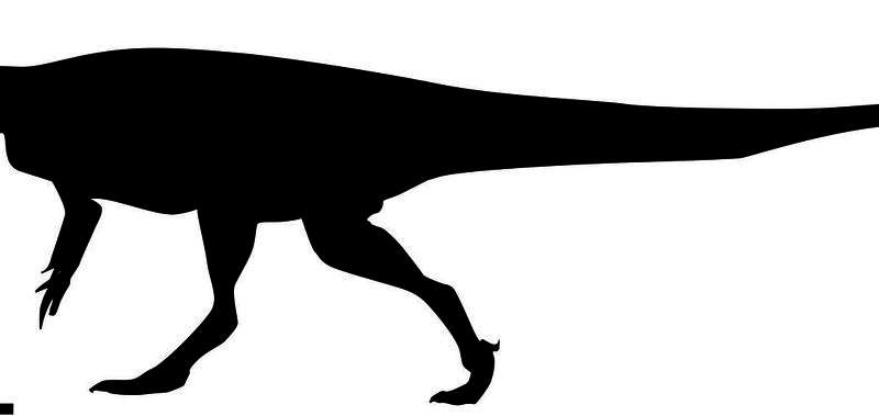 'Mega-carnivore' dinosaur roamed southern Africa 200 million years ago