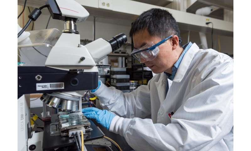Meniscus-assisted technique produces high efficiency perovskite PV films