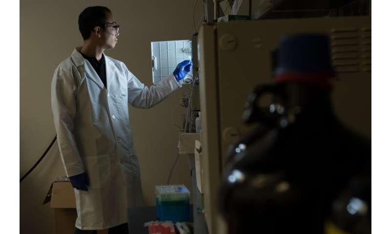 Metal simplifies synthesis of antibody drugs