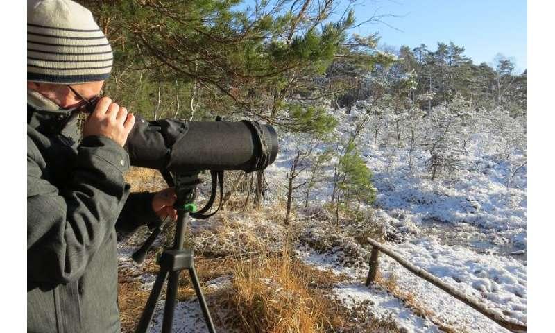 Monitoring programmes underestimate human impact on biodiversity