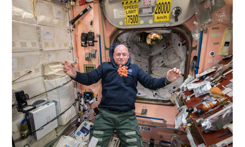 NASA sent a twin to space to study nature versus nurture – and we're starting to get results