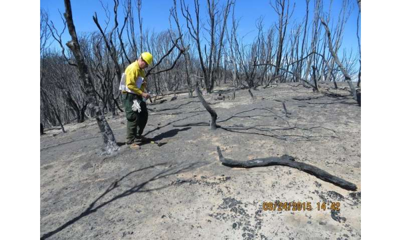 NASA-supported tool is accelerating wildfire recovery