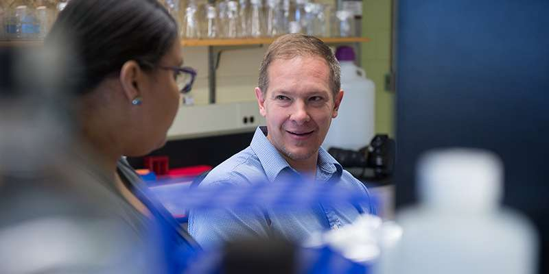 New study offers hope for more effective treatment of leukemia