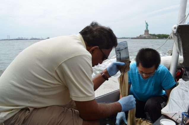 New York's waterways are swimming in plastic microbeads