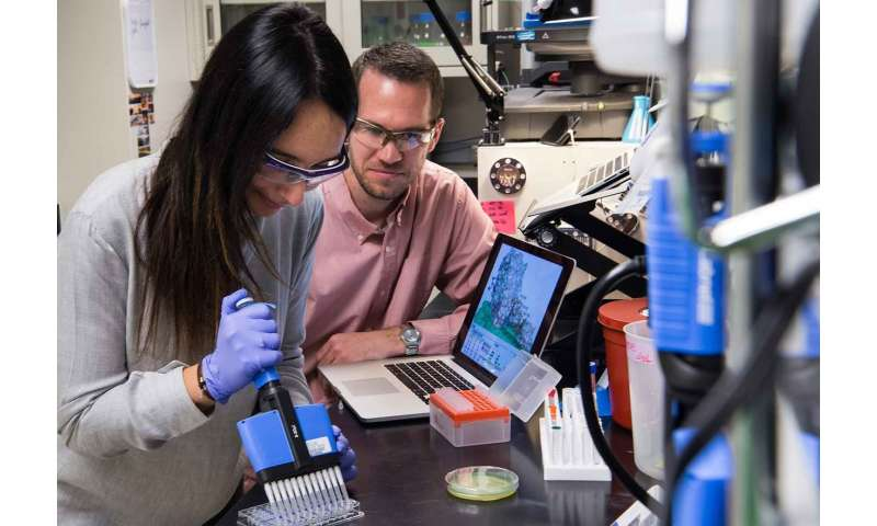 NREL research finds a sweet spot for engineering better cellulose-degrading enzymes