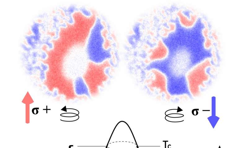 Optical control of magnetic memory -- New insights into fundamental mechanisms