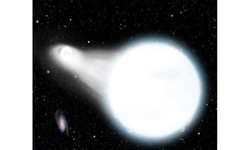 2017 white dwarf star - photo #2