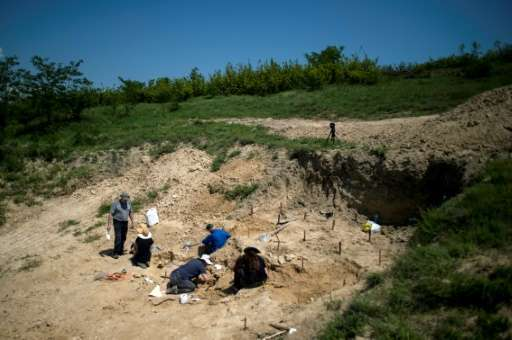 Palaeontologists work near the site in Bulgaria where a fossilised tooth with three roots was found, which some researchers say