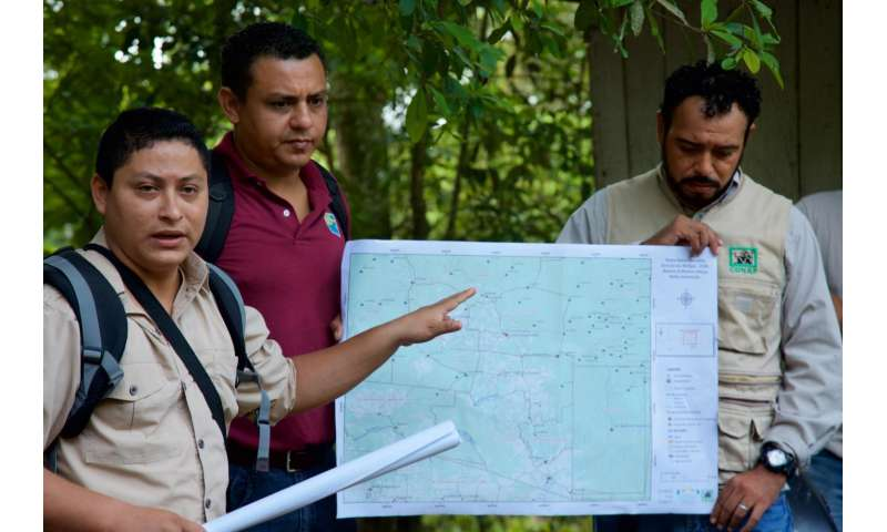 People and wildlife now threatened by rapid destruction of central America's forests
