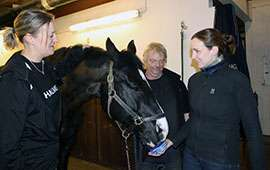 Police horses contribute to research in physics