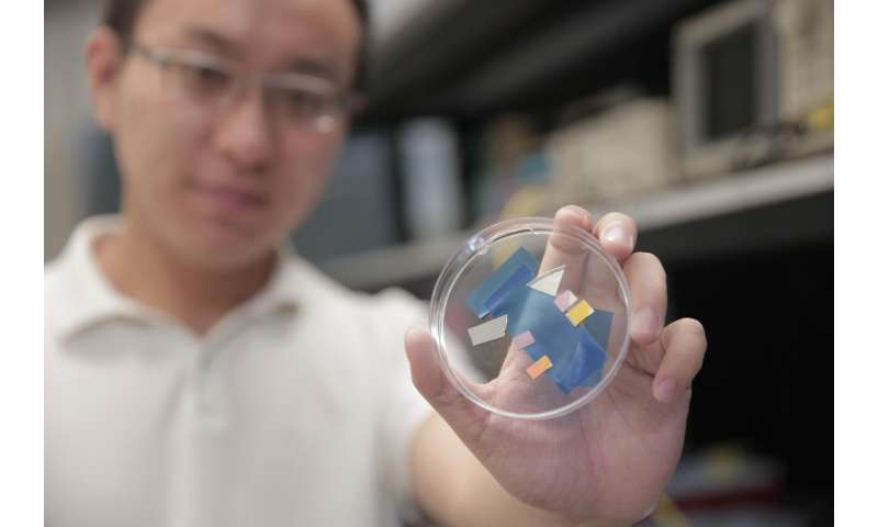 Powerful new photodetector can enable optoelectronics advances