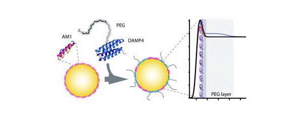 Progress on tailorable nanoscale emulsion for a wide variety of applications including drug delivery
