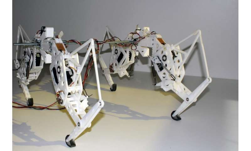 Researcher creates robotic cheetah