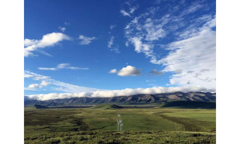 Rising temperatures threaten stability of Tibetan alpine grasslands