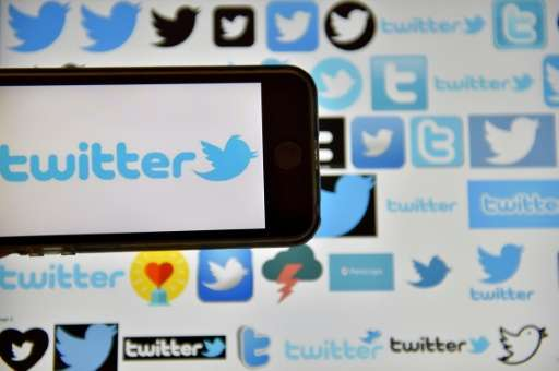 Some analysts had expected a bump in Twitter use following Donald Trump's election