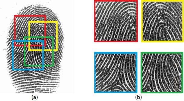 So you think you can secure your mobile phone with a fingerprint?