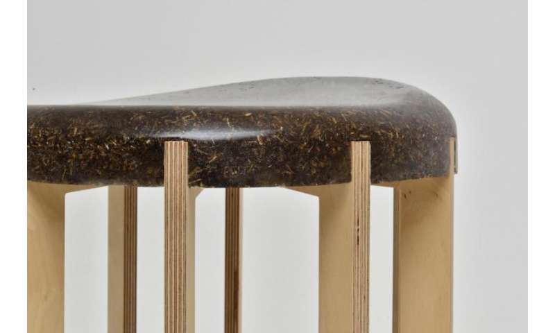 Student transforms cow manure into household furniture