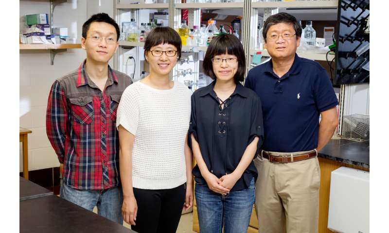 Study offers new insight into powerful inflammatory regulator