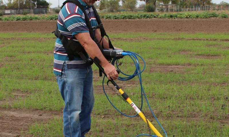 Study shows ground-penetrating radar can detect fine roots in crops