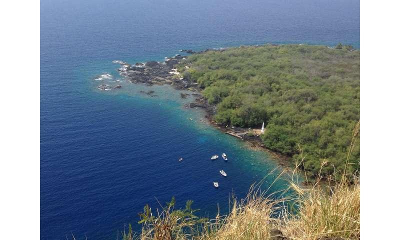 Tsunami reveals human noise pollution in Hawaiian waters