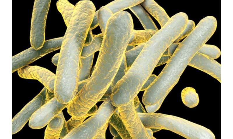 Tuberculosis a tragedy in India, and a grave concern for the rest of the world