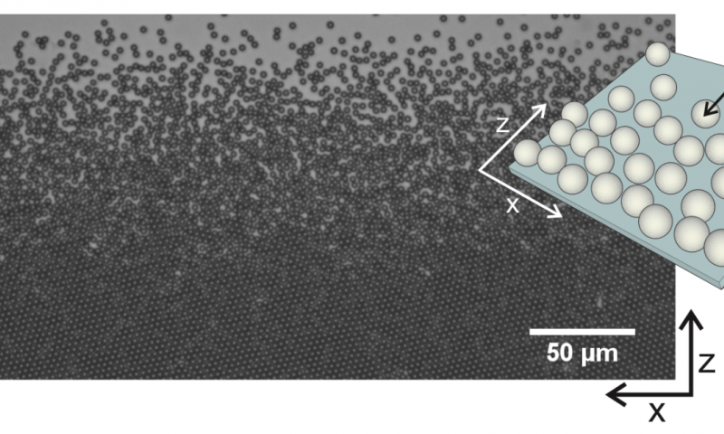 Two-dimensional melting of hard spheres experimentally unravelled after 60 years