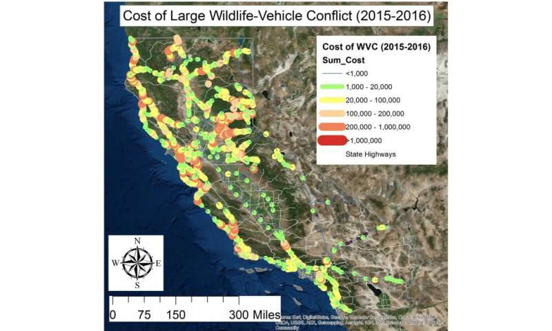 What roadkill is costing California