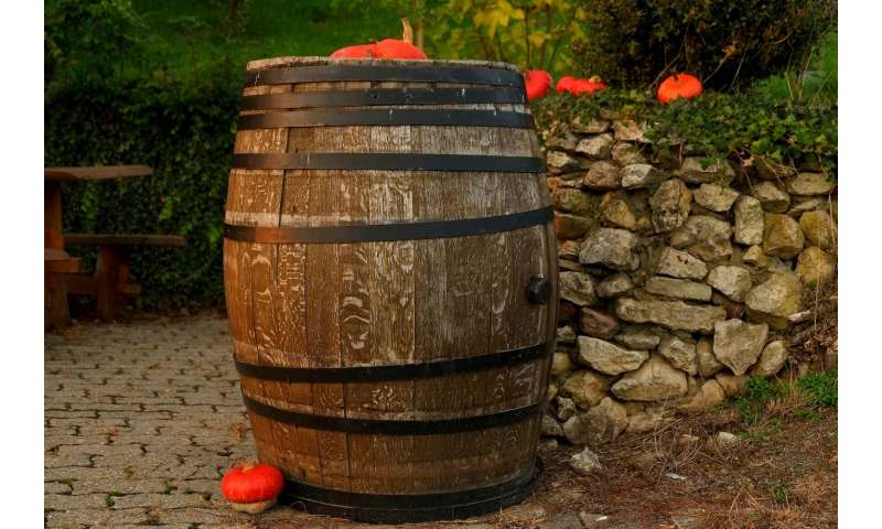 [Image: 1-wine.jpg]