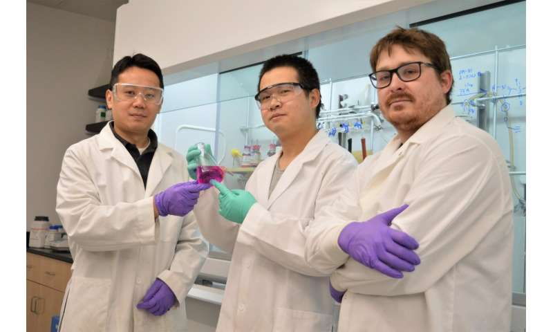 WSU chemists develop novel Washington Red dye for bio-imaging