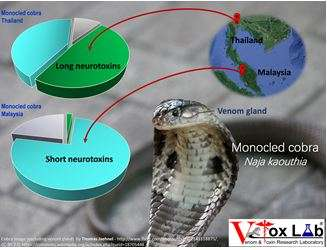 Exploring the toxin genes of monocled cobra through venom ...Naja Kaouthia Venom