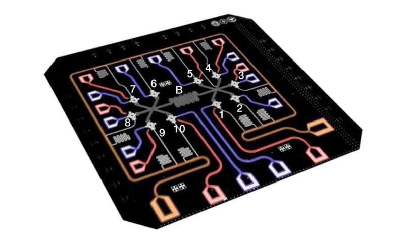 10 qubit entanglement