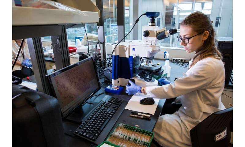 Study identifies new brain death pathway in Alzheimer's disease