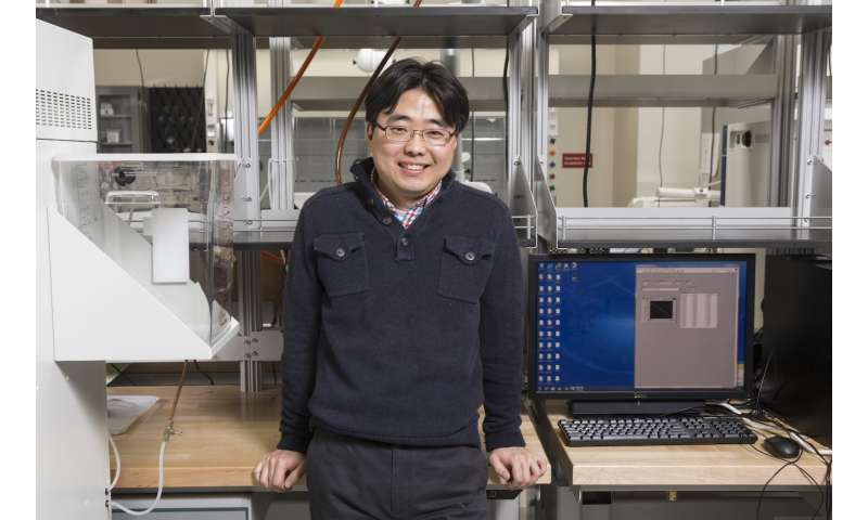 Researchers create self-sustaining bacteria-fueled power cell