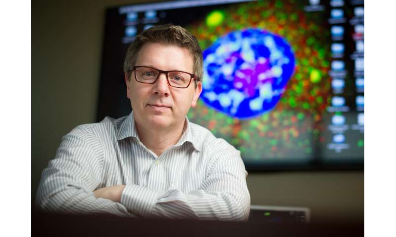 Researchers discover fundamental pathology behind ALS