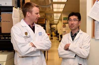 Researchers discover new immunotherapy combination effective at killing cancer cells