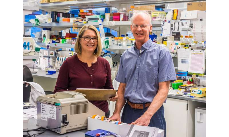 Immunotherapy, gene editing advances extend to Type 1 Diabetes